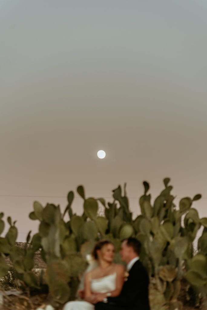 Moon rising over garden of prickly pear cacti during this desert elopement outside Phoenix, AZ
