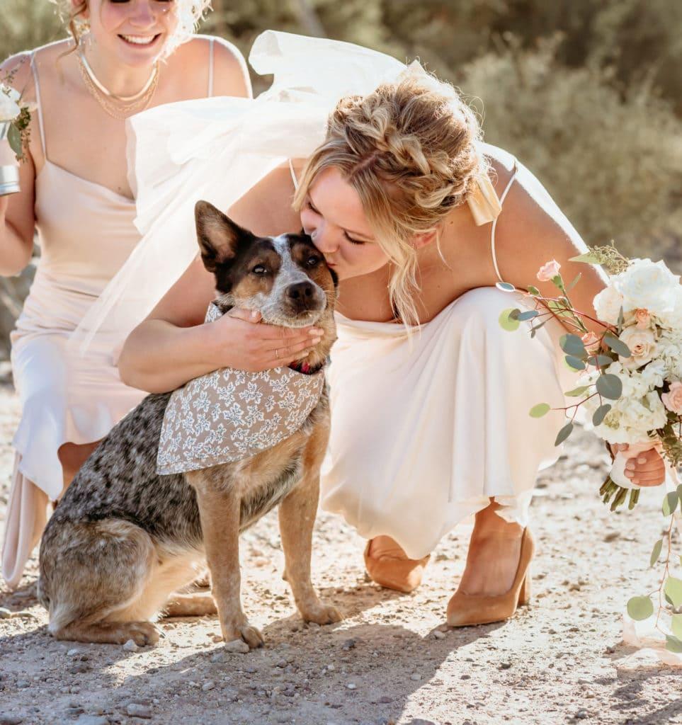 Bride kisses her cattle dog flower girl