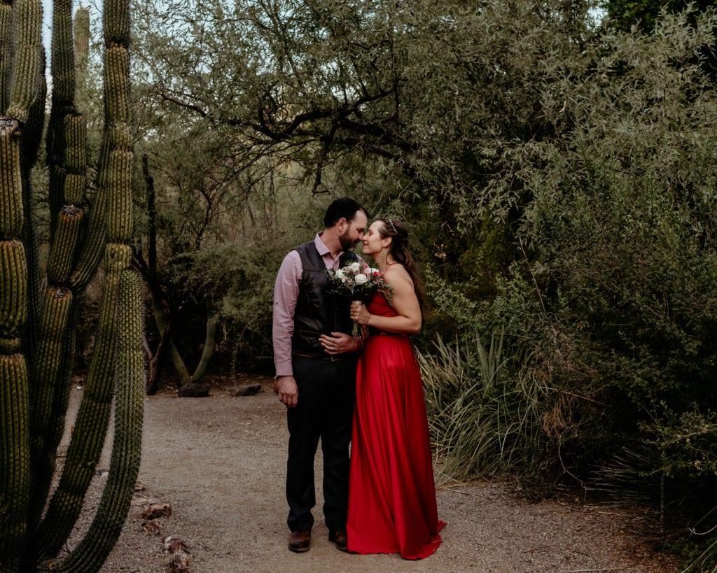 Wedding couple surrounded by giant cacti during their intimate Tucson Botanical Gardens wedding